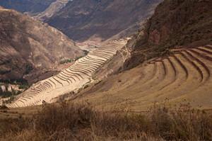 Písac, Peru, Terrassen für die Landwirtschaft, Foto Unukorno, wikipedia