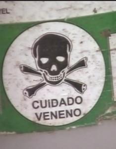 tobacco brazil_ausschnitt