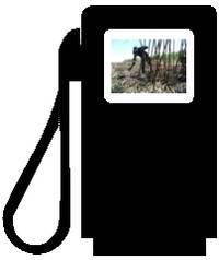 Ethanol im Tank: Woher kommt der Bio-Turbo - und wer zahlt den Preis? Foto und Montage: Christian Russau
