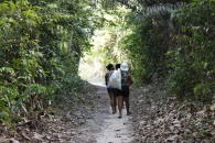 Kleinbäuerinnen in Pará auf dem Weg zu ihren Feldern Foto: ASW e.V.