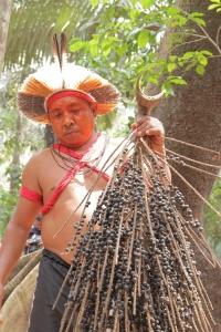 Brasilien Amazonien
